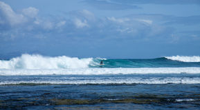 Group of surfers in the sea swell Royalty Free Stock Photos