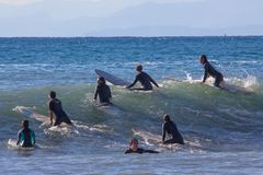 A group of surfers wait for the wave royalty free stock photo