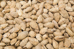 A group of sweet almonds Royalty Free Stock Image