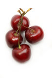 Group of sweet cherry Royalty Free Stock Photography