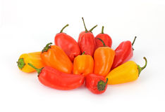 Group Sweet Mini Peppers royalty free stock image