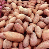 Group of Sweet Potatoes Royalty Free Stock Images
