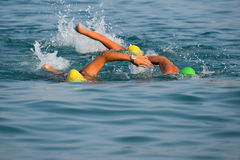 Group of swimmers swim in the sea Royalty Free Stock Photo