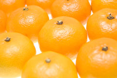 Group of tangerines Royalty Free Stock Photo