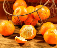 Group of Tangerines Stock Images