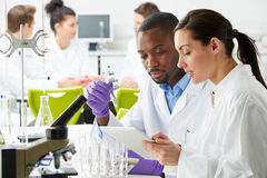 Group Of Technicians Working In Laboratory. Looking At Tablet royalty free stock images