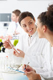Group Of Technicians Working In Laboratory. Smiling At Each Over Stock Photos