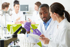 Group Of Technicians Working In Laboratory. Whilst Royalty Free Stock Image