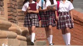 School Girls Wearing Skirts. A Group of Teen School Girls Stock Images
