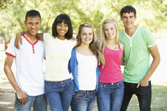 Group Of Teenage Friends Standing In Park Stock Images