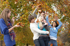 Group Of Teenage Friends Throwing Leaves In Autumn. Landscape Stock Photography