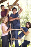 Group Of Teenage Friends By Treehouse Royalty Free Stock Photography