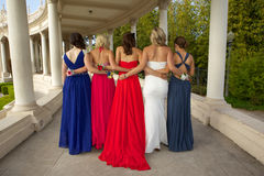 A Group of Teenage Girls from the back posing in their Prom Dresses Royalty Free Stock Photos
