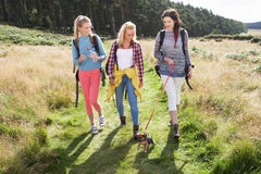 Group Of Teenage Girls Hiking In Countryside With Dog Royalty Free Stock Images