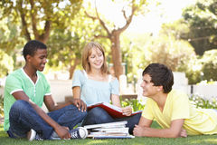 Group Of Teenage Students Chatting In Park Stock Images