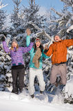 Group of teenagers jumping together in wintertime royalty free stock photos