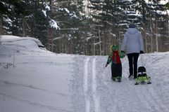 Group of teenagers slide downhill in wintertime.  Stock Image