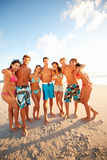 Group of teens enjoying themselves at the beach Royalty Free Stock Photos