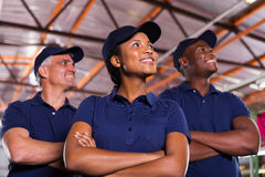 Group textile co-workers Royalty Free Stock Photography