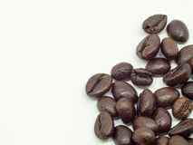 A group of thin coffee beans are on a white background.  Royalty Free Stock Images