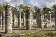 Thousand Columns at Chichen Itza. Group of the Thousand Columns at Chichen Itza feels like a forest of columns. They surround the Temple of of Warriors and they Stock Images