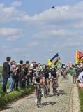 Group of Three Cyclists- Paris-Roubaix 2014. Carrefour de l'Arbre,France-April 13,2014: A group of three cyclists (John Degenkolb-Giant Shimano,Fabian Cancellara Royalty Free Stock Photography