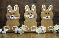Group of three Happy Easter bunny rabbit gingerbread cookies. On rustic country style natural wood recycled timber background Royalty Free Stock Photos