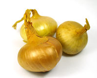 Group of three onions. (selective focus on first onion royalty free stock images