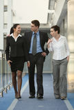 Group three persons talking walking office Stock Image