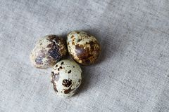 Group of three quail eggs on a homespun tablecloth, top view, close-up, selective focus, copy space, backlight. Group of three spotted quail eggs on a homespun Royalty Free Stock Photo