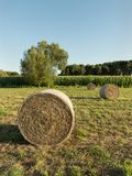 Group of three round bales of hay harvested in a field. stock photos