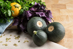 A group of three round green and yellow zucchinis on a wooden background. A bunch of fresh, raw parsley and basil. A composition of ripe zucchinis, spicy Royalty Free Stock Photography