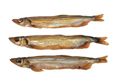 Group of three a smoked golden fishs. Stock Photos