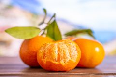 Mandarine with a leaf in italy. Group of three whole fresh orange mandarine with green leaves one fruit is half peeled with italian mountains in background royalty free stock photos