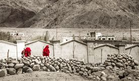 Group tibetan monks in red robes goes by the colorless lanscape Stock Image