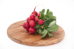 Group tied radishes on the wooden kitchen board Royalty Free Stock Images