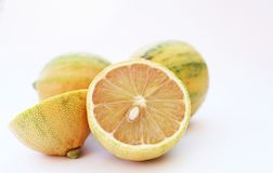 Group of tiger lemons whole and halved. On a plain background stock image