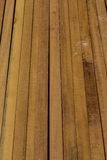Group of Timber Stock Image
