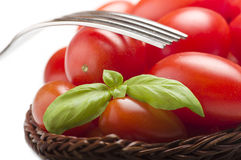Group of tomato Royalty Free Stock Photography
