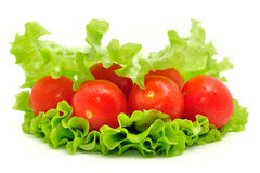 Group of tomato and green salad  on white background Royalty Free Stock Images