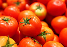 Group of tomato Stock Images