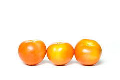 A group of tomatoes Royalty Free Stock Photos
