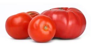 Group of tomatos