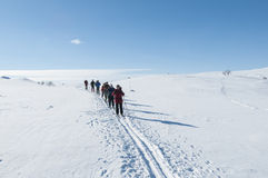 Group of tour skiers Royalty Free Stock Image