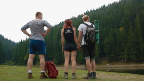 Group of tourist stand on the meadow stock video footage