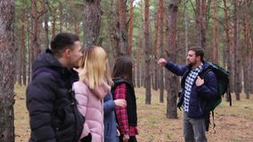 A group of tourists in autumn clothes is standing in the woods and listening to a forester. A group of tourists in autumn clothes stands in the woods, looks at stock video footage