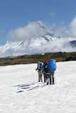 Group of tourists climbing the snowfield on background volcanoes Royalty Free Stock Images