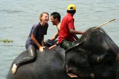 Bathing with elephants Royalty Free Stock Photos