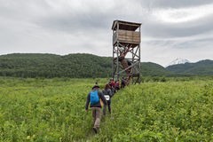 Group of tourists go to observation tower. Nature park Nalychevo, Kamchatka Peninsula Royalty Free Stock Photos