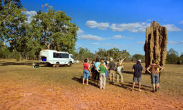 A group of tourists with a guide from termite mounds in the North of Australia Royalty Free Stock Photos